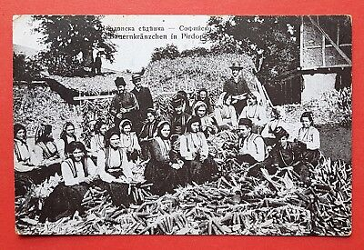 AK BULGARIEN 1918 Bauern in Pirdop   ( 32822