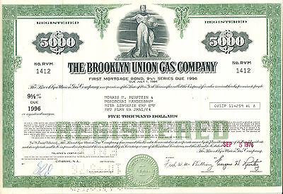 The Brooklyn Union Gas Company 1976