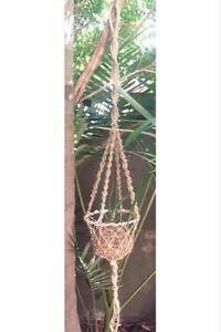 Aloe Vera Kokedama with X-Large Handmade Macrame Hanger Merewether Newcastle Area Preview