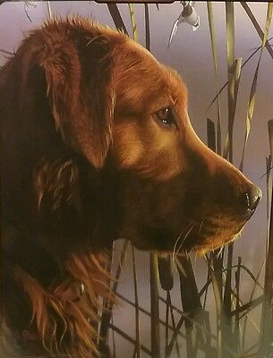 "IRISH SETTER OVERSIZE Blanket 50""x60"" DUCK HUNTER"