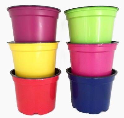 Nutley's 12cm coloured plant pots plastic flowerpot rainbow mix