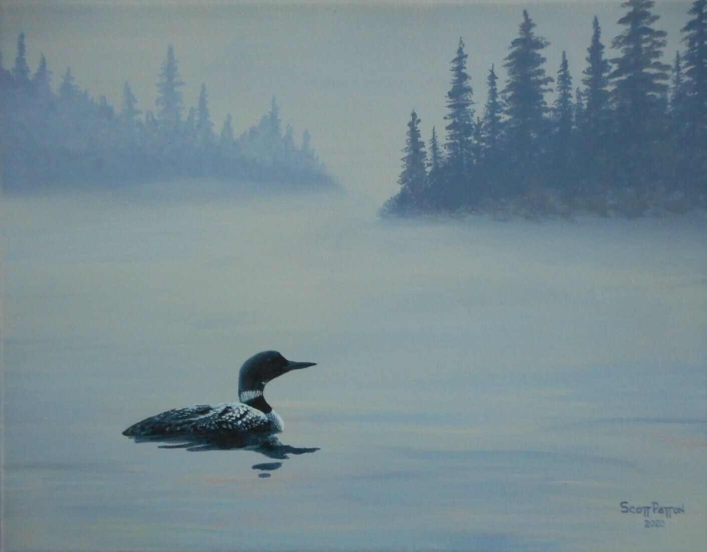 Scott Patton Art Loon On Foggy Lake Original North Woods Wildlife Painting - $80.00