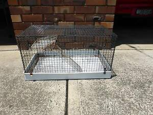 pet rat cage Kanahooka Wollongong Area Preview