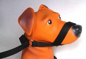 Figure Of Eight Dog Lead Pets At Home