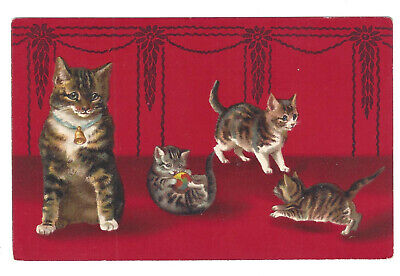 Antique Postcard Cat Kittens Playing Dark Red Background Embossed Germany Dark Red Background