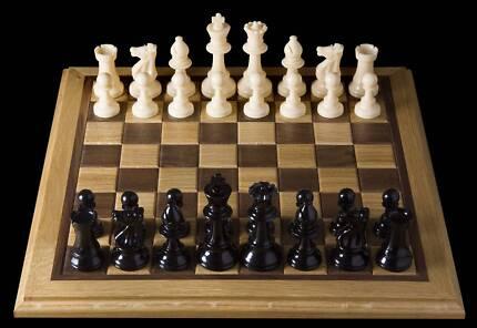 Chess Teacher Tutor Lesson Learn Coach All Experience Levels