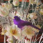 The Vintage Purple Bird