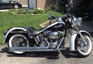 Spring fever?!!! HD Softail Deluxe