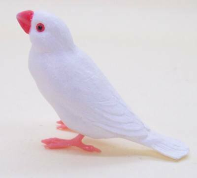 Shine-G sparrow figure collection white Java sparrow finch normal US seller new