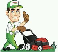 Grass cutting / Lawn mowing & Grass trimming