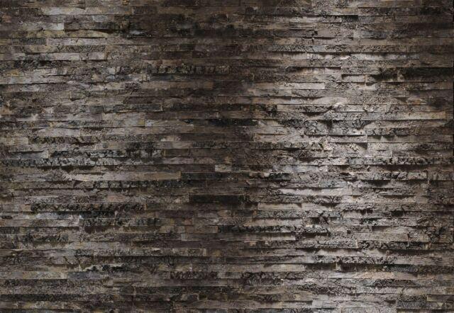 SALE! BIRKENRINDE WOOD BIRCH BARK Photo Wallpaper Wall Mural WOODEN TEXTURES
