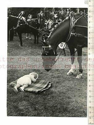 ORIGINAL PRESSEFOTO: 1955 KENSIGTON PALACE FIELDS ANNUAL PONY SHOW WITH BABY