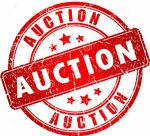 hawt_auction