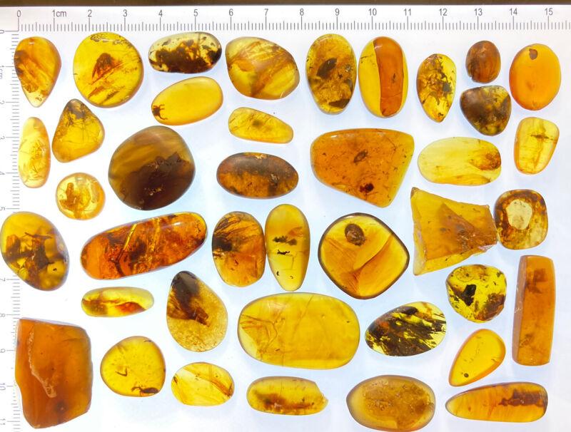 40 pristine insects ++ Burmite Amber LOT, Prehistoric Fossil Inclusions, 98myo