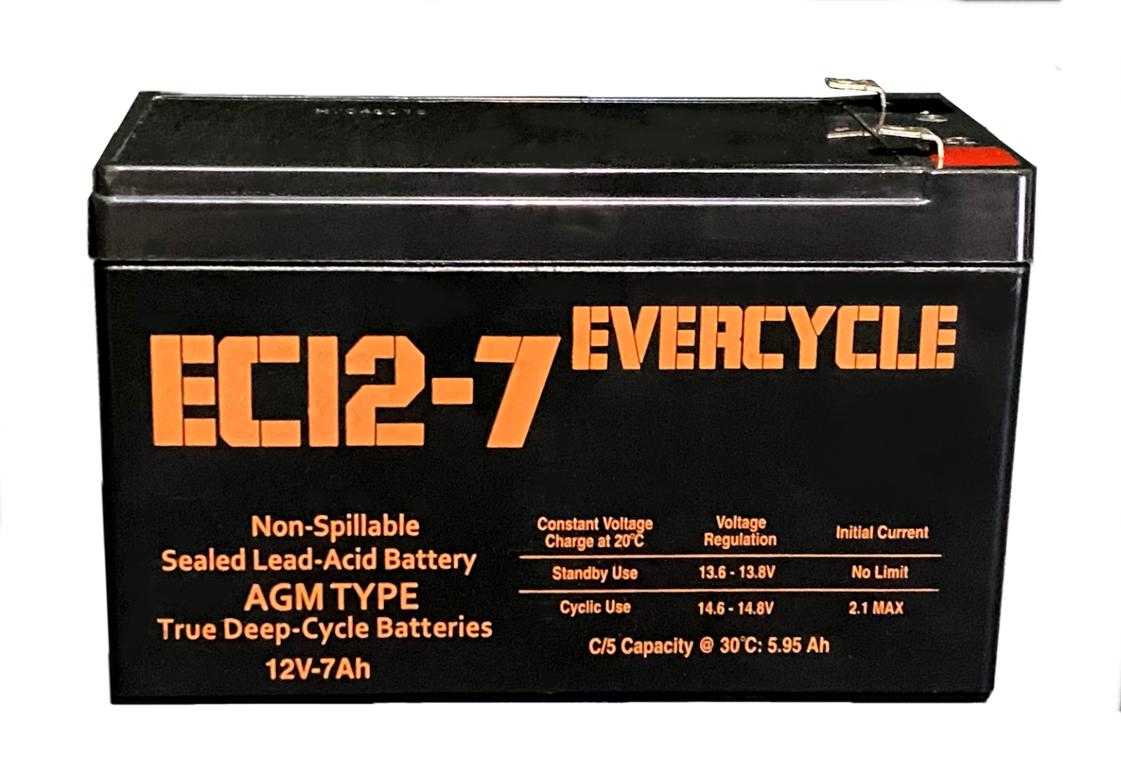 evercycle 12v 12ah f2 kid trax rechargeable