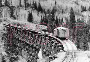 Rio Grande Southern (RGS) Galloping Goose 5 on the Ophir Trestle in 1949 - 8x10
