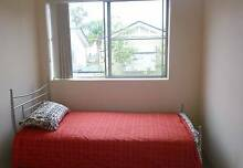 Single Room available for a Female tenant Coorparoo Brisbane South East Preview