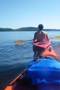 Canoe, Kayak & SUP RENTALS-Freedom Canoe and Kayak in Blackstock