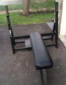 Bench + Weights