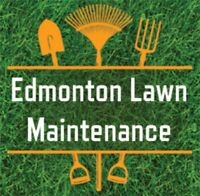 Spring clean up and Lawn Care services