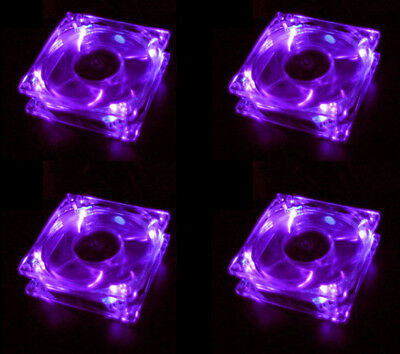 purple quad 4 light neon