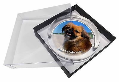 Pekingese 'Yours Forever' Glass Paperweight in Gift Box Christmas Pr, AD-PE90yPW