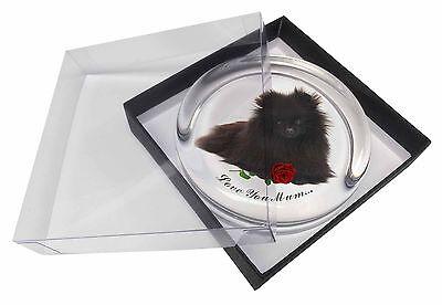 Pomeranian Dog+Rose 'Love You Mum' Glass Paperweight in Gift Box , AD-PO90RlymPW