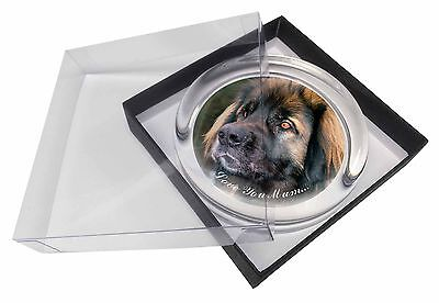 Black Leonberger 'Love You Mum' Glass Paperweight in Gift Box Chris, AD-L56lymPW
