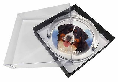 Bernese 'Love You Dad' Glass Paperweight in Gift Box Christmas Present, DAD-8PW