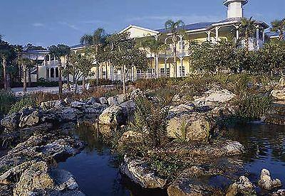 Orlando  Fl 7 Night Stay Marriotts Harbour Lake