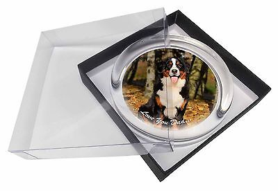 Bernese Mountain Dog 'Love You Dad' Glass Paperweight in Gift Box Chris, DAD-9PW