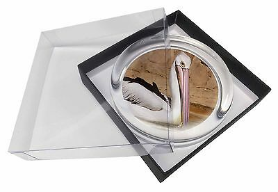Pelican Print Glass Paperweight in Gift Box Christmas Present, AB-68PW