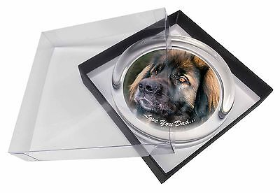 Leonberger Dog 'Love You Dad' Glass Paperweight in Gift Box Christmas , DAD-68PW