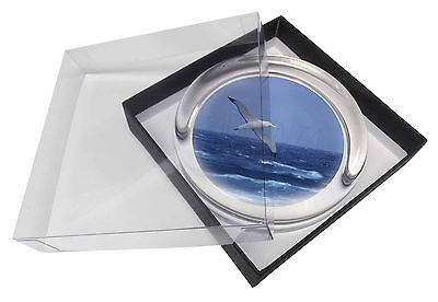 Sea Albatross Flying Free Glass Paperweight in Gift Box Christmas Pres, AB-106PW
