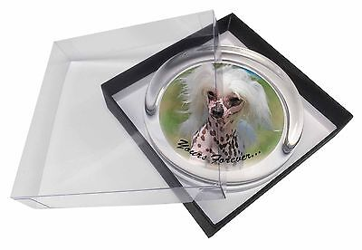 """Chinese Crested Dog """"Yours Forever..."""" Glass Paperweight in Gift Box, AD-CHC4yPW"""