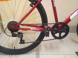 Dunlop Red Bicycle Northbridge Perth City Area Preview
