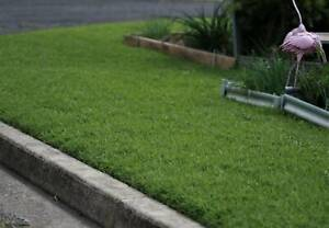 Lawncare for the discerning - Lithgow