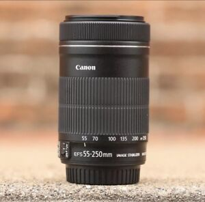 Canon 55-250 EFS IS STM telephoto zoom lens