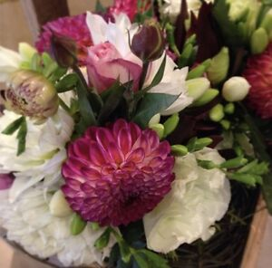 Wedding Flowers Melbourne Taylors Hill Melton Area Preview