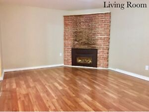 Lower (Basement) Unit/ Apartment- 2 Bedrooms in St. Catharines