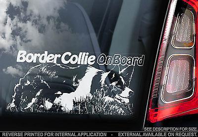 Scottish Border Collie - English Border Collie - Car Window Sticker - Scottish Sheep Dog Sheepdog - TYP2