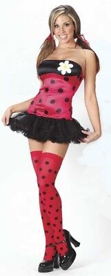 Sexy Ladybug - Cute Lady Bug Adult Women's Costume - Size: Small/Medium (8-14) - Lady Bug Costume Adult