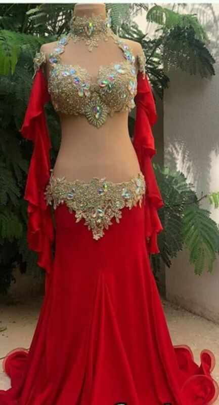Dancing professional belly dance costume many color and any size