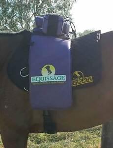 Purple Equissage for sale- excellent condition Bendigo Bendigo City Preview