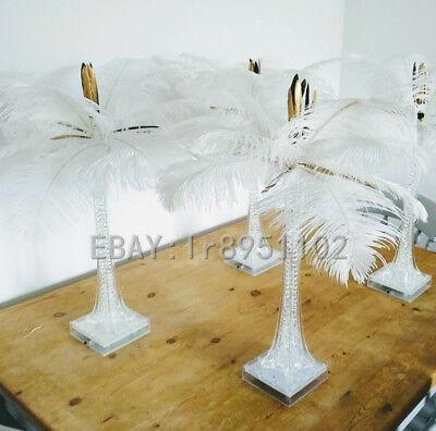 Großhandel! 100 Stk Strauß Heilige weiß Federn (40.6-45.7cm/40-45cm) Deko