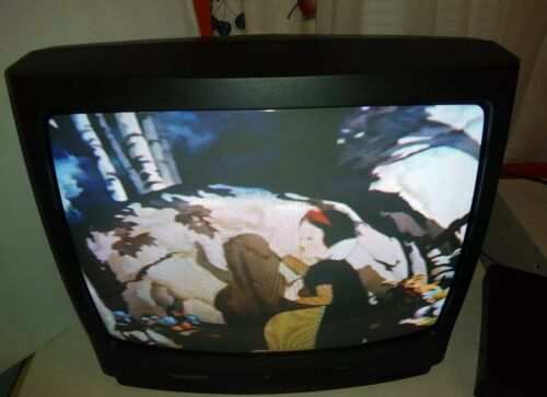 "Magnavox MT1905B301 19"" CRT Tv/ Retro Gaming Television with remote no AV Input"