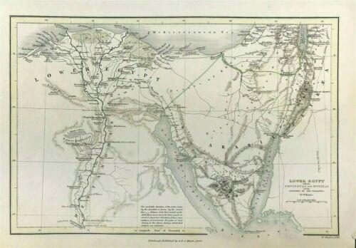 Antique Map Lower Egypt c1843 W Hughes & Black, original Journey of Israelites