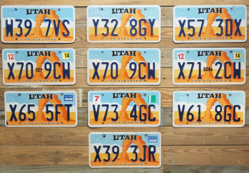 License Plate Lot of 10 Utah Delicate Arch Expired 2014 Auto Tags