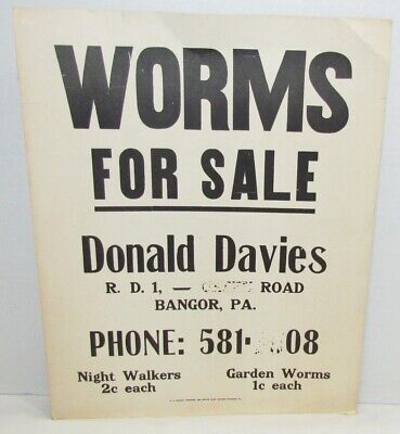 """Vintage """"Worms For Sale"""" Sign"""
