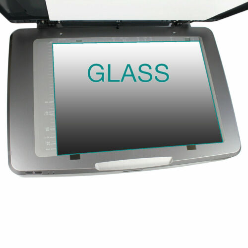 GLASS for Epson Expression 10000XL scanner with instructions